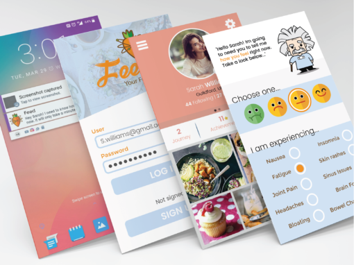 <strong>Feed</strong> <br> UX/UI